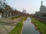 fukurogawa_sakura1.JPG